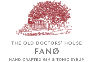 Old Doctors' House Gin Logo